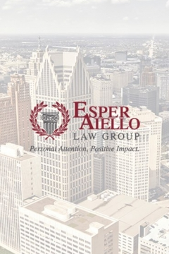 Esper Aiello Daily Logbook Screenshot